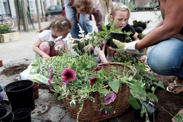 Stadtbegrünung im Rahmen des Urban Gardening in Bremerhaven : One Three Three